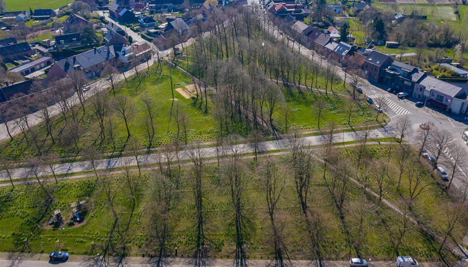 Residentie Willemien in Buggenhout